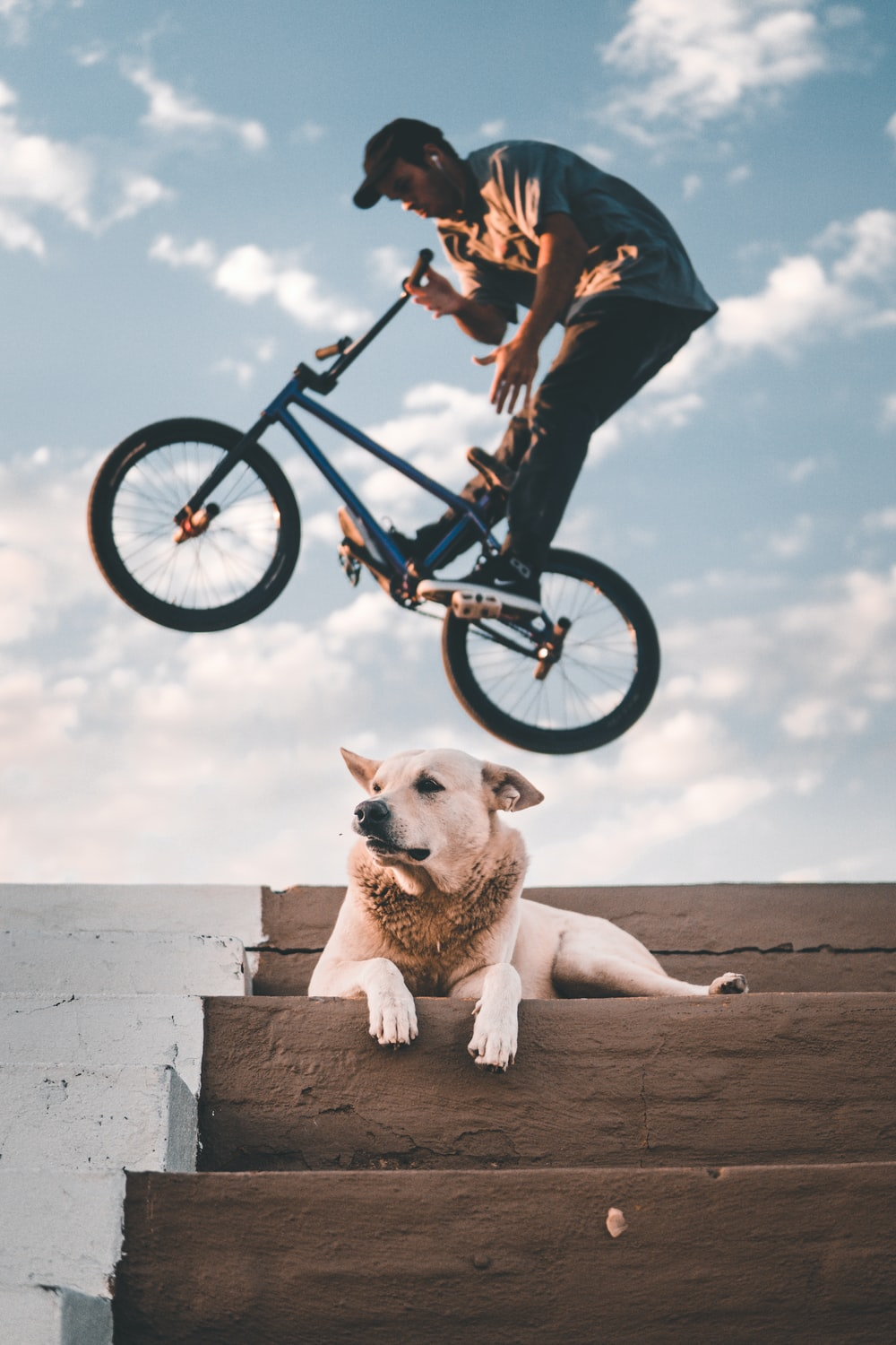 Best BMX Bikes 2020 | Best Products Review, Buying Guide & Much More