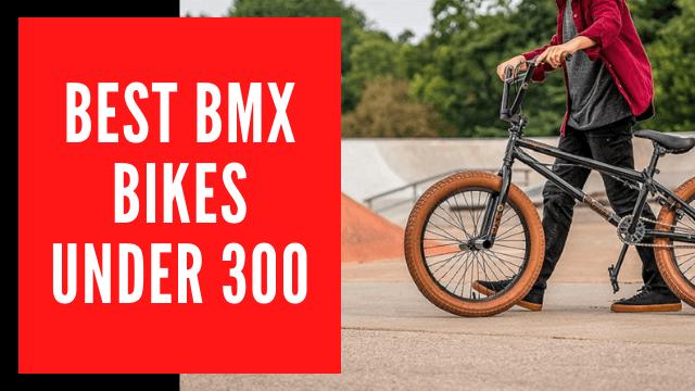 Best BMX Bikes under 300